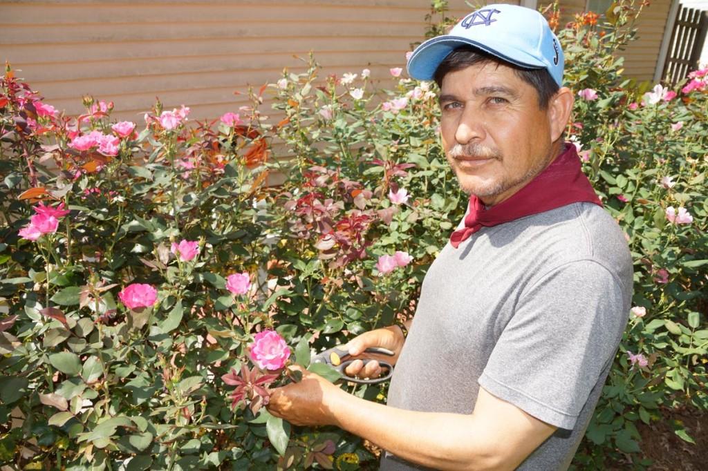 Luis Espejo, Gwinnett Lawn Care Services